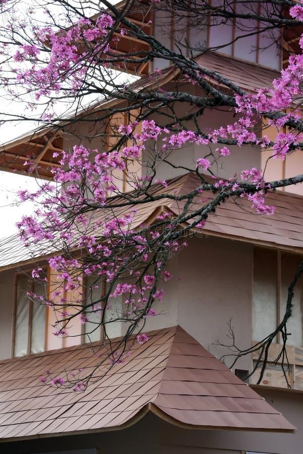 Casa japonesa imagenes de archivo