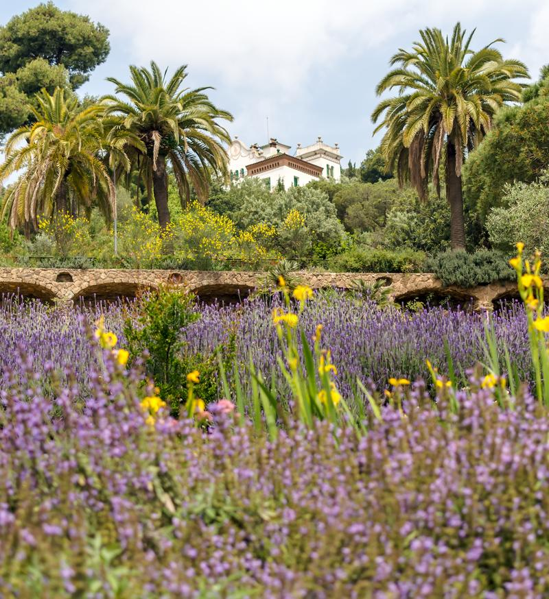 Casa Marti Trias i Domenech nell'auna del ¼ del parco GÃ, Barcellona, Spagna immagini stock