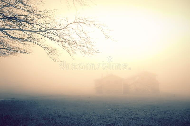 Casa misteriosa nella foresta con nebbia immagine stock libera da diritti
