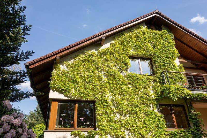 Casa moderna de la familia cubierta por las plantas de la hiedra fotos de archivo libres de regalías