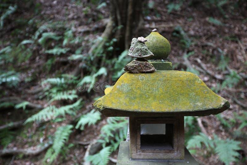 casa Musgo-cubierta imagen de archivo libre de regalías