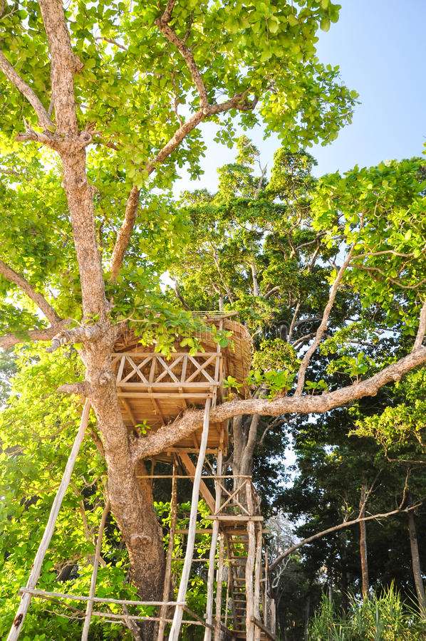 Casa na árvore bonita na praia de Radhanagar na ilha de Havelock - ilhas de Andaman, Índia imagem de stock