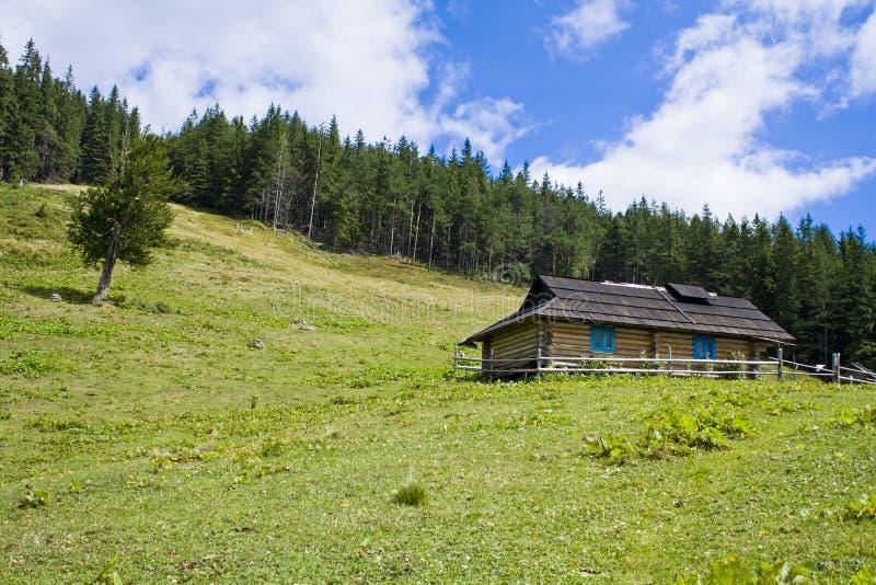 Download A casa na floresta imagem de stock. Imagem de perigo - 26521929
