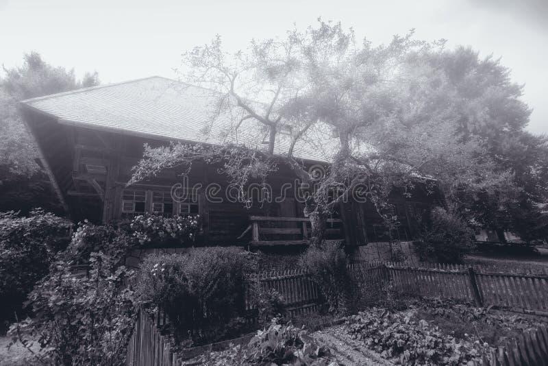 Casa na Floresta Negra fotos de stock royalty free