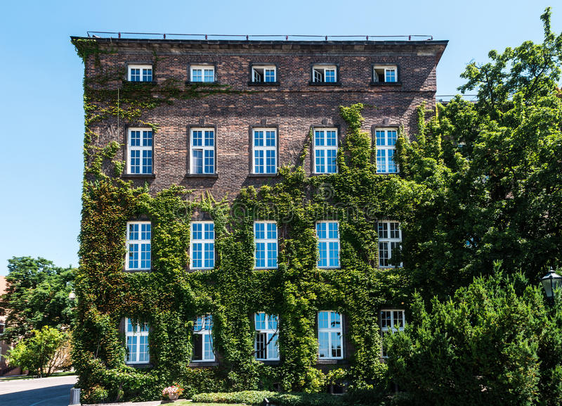 Casa nas uvas em Krakow fotografia de stock
