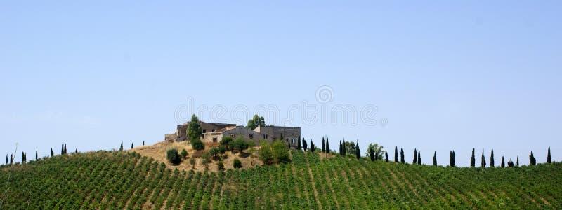 Casa no monte da vinha foto de stock