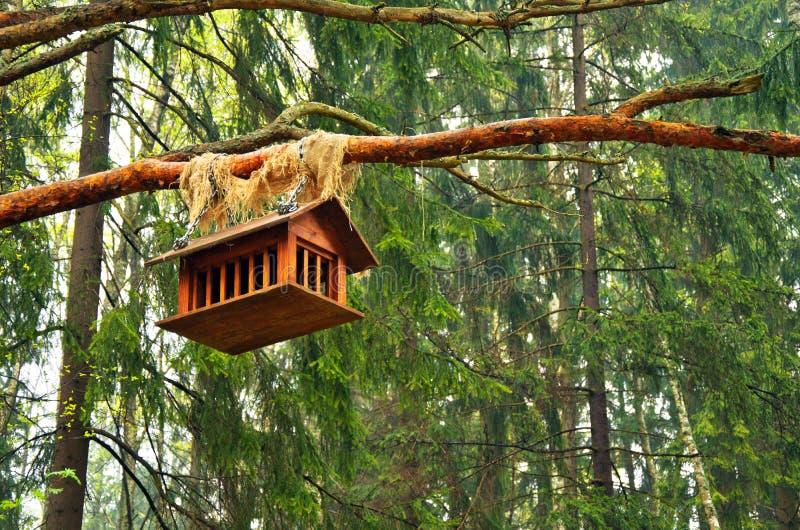 Casa para pássaros, pendurando nas madeiras em um ramo de uma árvore velha foto de stock royalty free