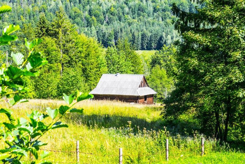 Casa pela floresta imagens de stock