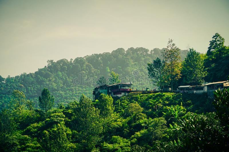 Casa pequena no meio do monte superior da montanha no puncak bogor imagens de stock royalty free