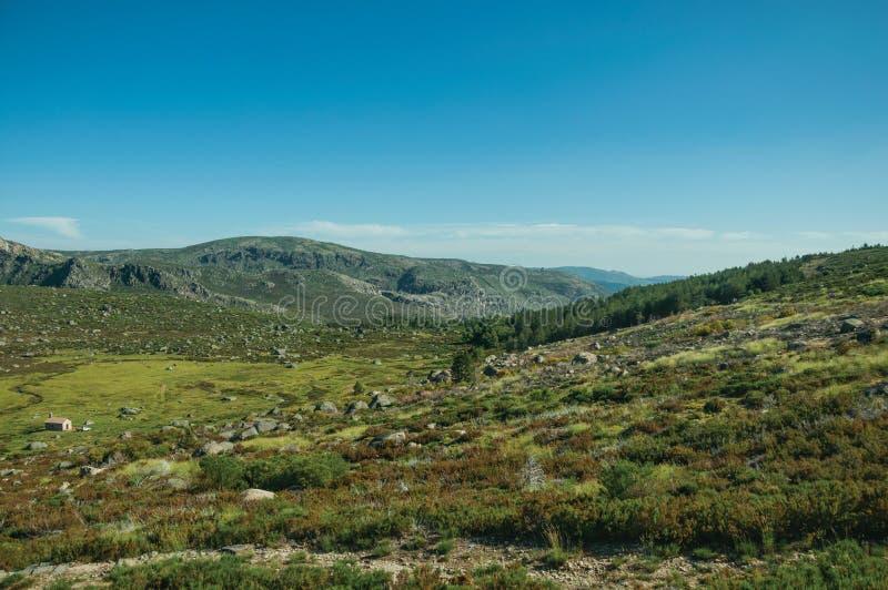 Casa pequena só em campos verdes e na paisagem rochosa imagem de stock