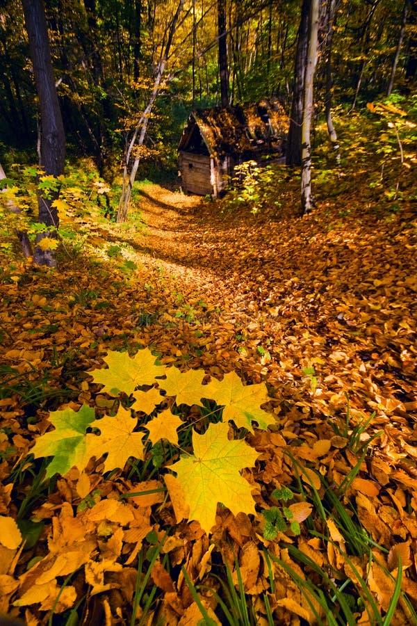 Casa persa nella foresta di autunno immagini stock