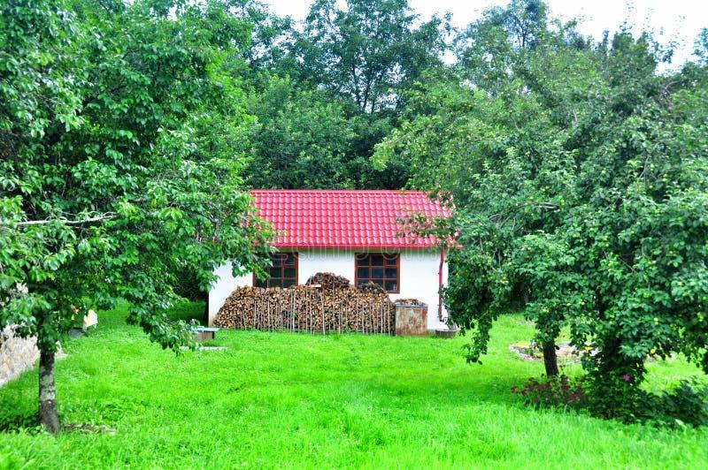 Download Casa Piacevole Nel Villaggio Immagine Stock - Immagine di bello, verde: 56886597