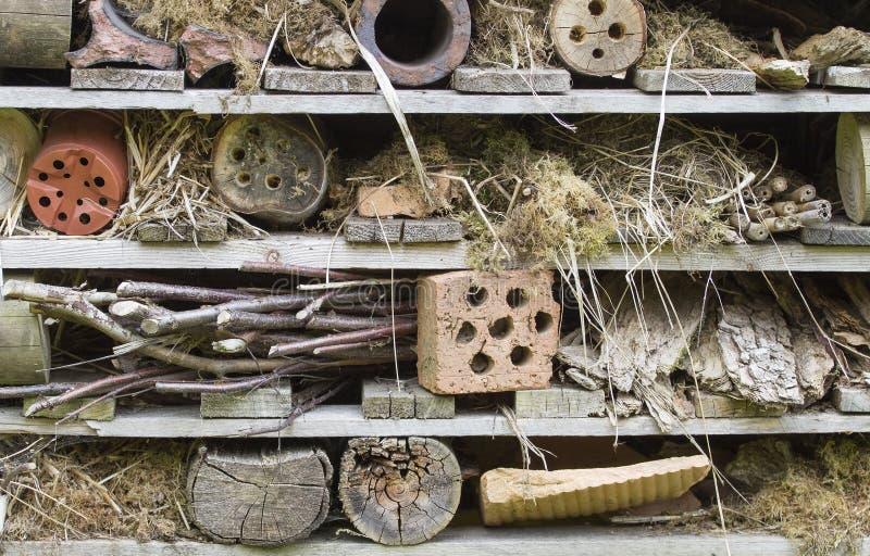 Casa rústica del insecto imagenes de archivo