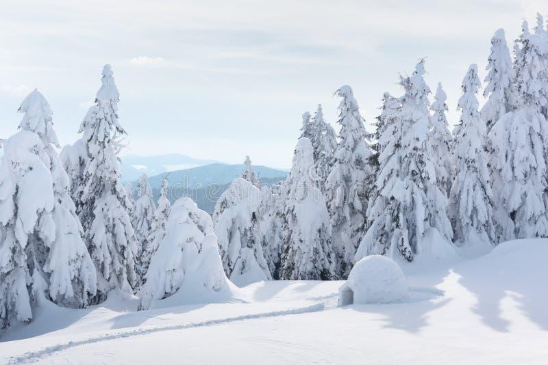 Casa real do iglu da neve nas montanhas Carpathian do inverno fotos de stock