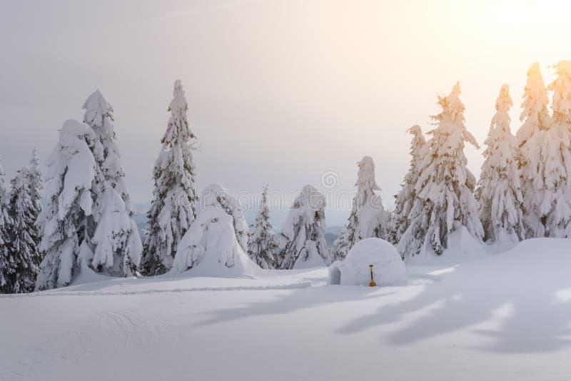 Casa reale dell'iglù della neve nelle montagne carpatiche di inverno immagine stock libera da diritti