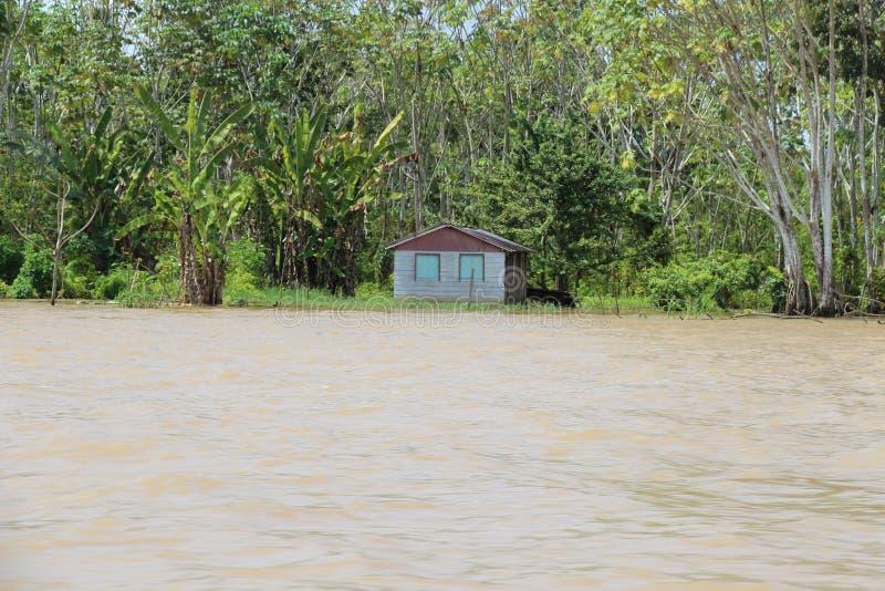 Casa ribeirinho no Rio Madeira, e na inundação do rio imagem de stock