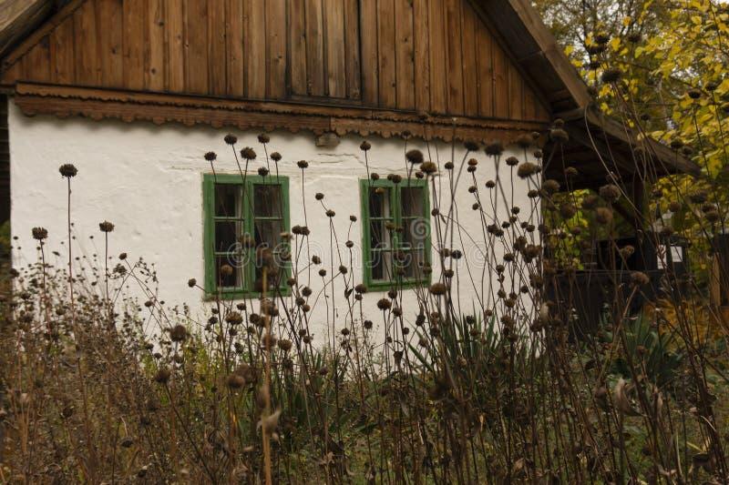 Casa rural velha com as janelas quadro de madeira verdes e as flores selvagens do outono imagem de stock royalty free