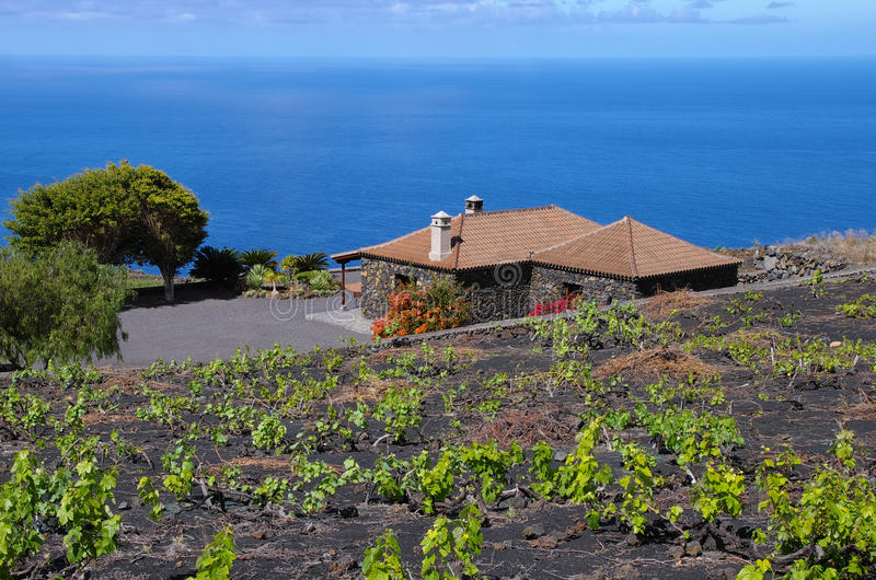 Casa Rural among the vineyard over the ocean stock photo
