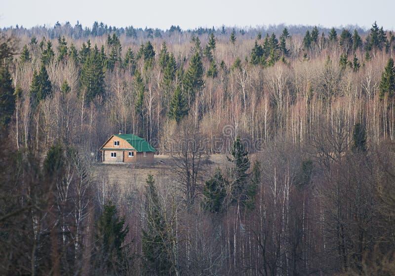 Casa só na floresta profunda imagem de stock