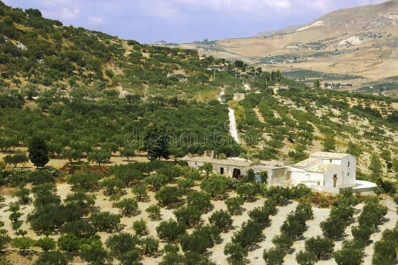Casa siciliana dell'azienda agricola fotografie stock libere da diritti