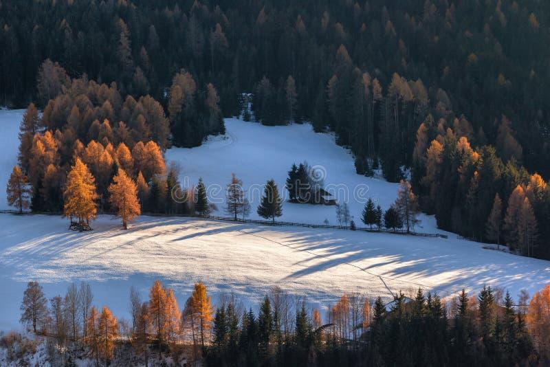 Casa sola en bosque en el pueblo del St Magdalena del anillo f, dolomías, Italia fotos de archivo libres de regalías