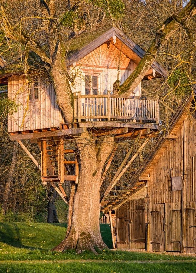 Casa sull'albero fotografia stock libera da diritti