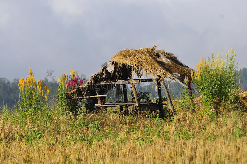 Casa sull'azienda agricola fotografia stock