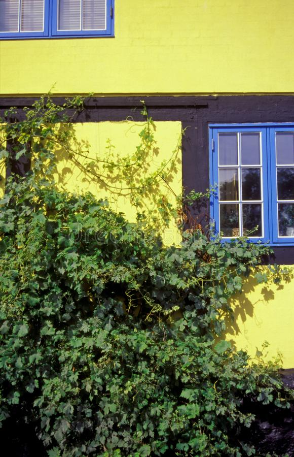 Casa suportada amarela dinamarquesa com janelas azuis fotos de stock royalty free