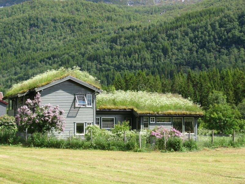 Casa tipica dell'azienda agricola della Norvegia immagini stock libere da diritti