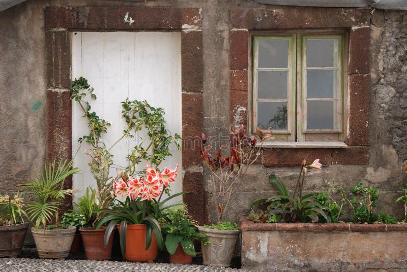 Casa tipica sulla Madera fotografia stock libera da diritti