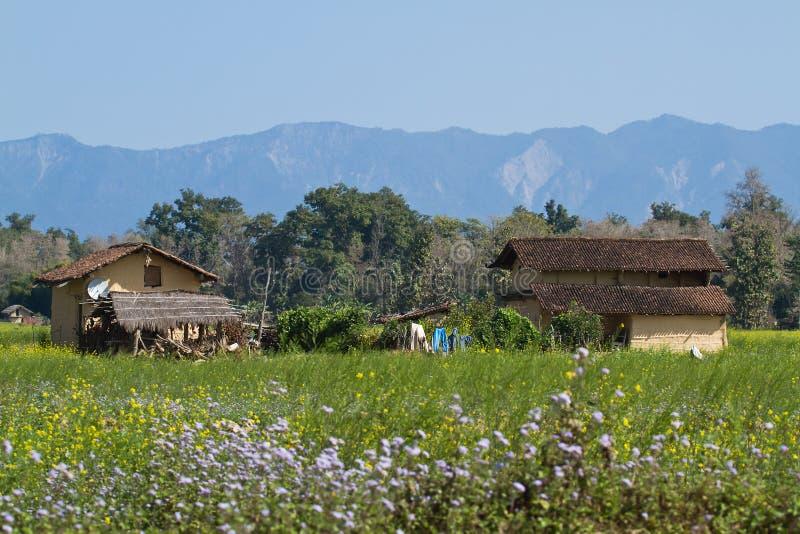 Casa tradicional del taru en Bardia, Nepal imagenes de archivo