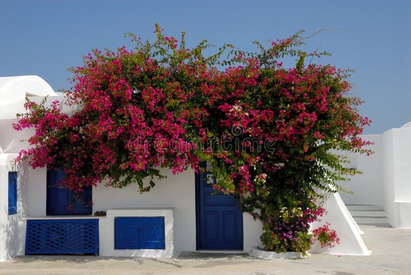 Casa tradicional em Santorini, Greece fotografia de stock