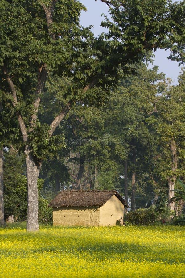 Casa tradicional en el pueblo de Taru, Nepal imágenes de archivo libres de regalías