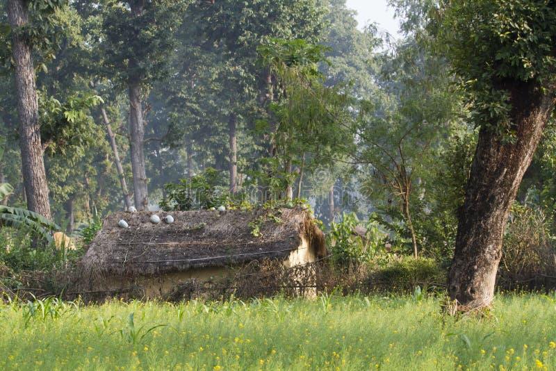 Casa tradicional en un pueblo de Taru, Nepal imagenes de archivo