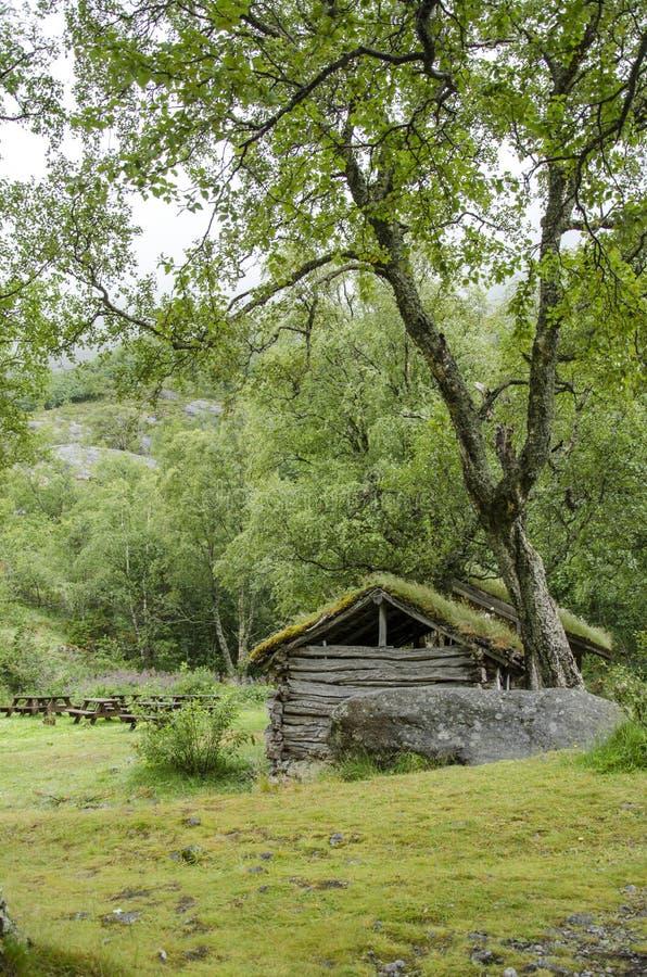Download Casa Tradicional Escandinava Com Telhado Verde Foto de Stock - Imagem de fjords, registro: 29833514