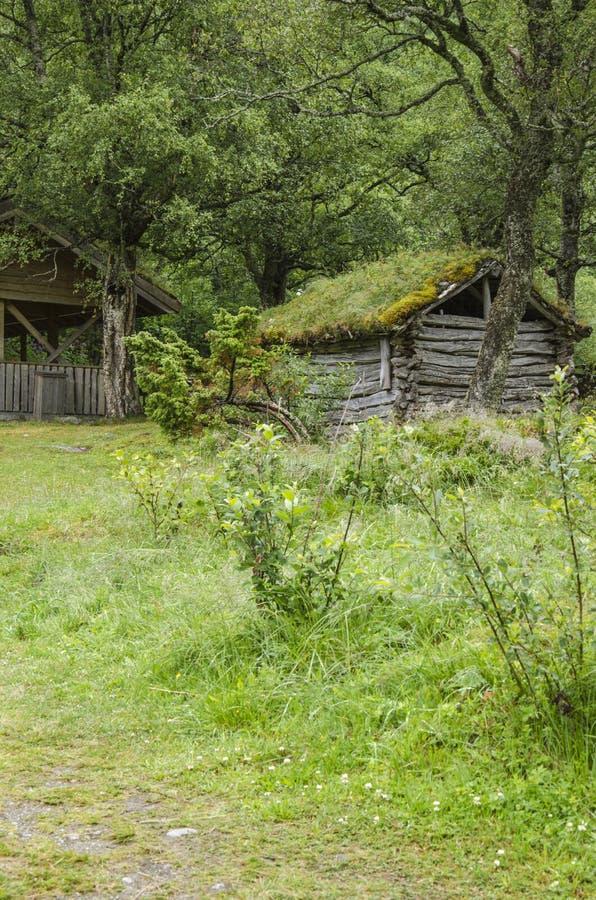 Download Casa Tradicional Escandinava Com Telhado Verde Imagem de Stock - Imagem de naughty, ecology: 29833569