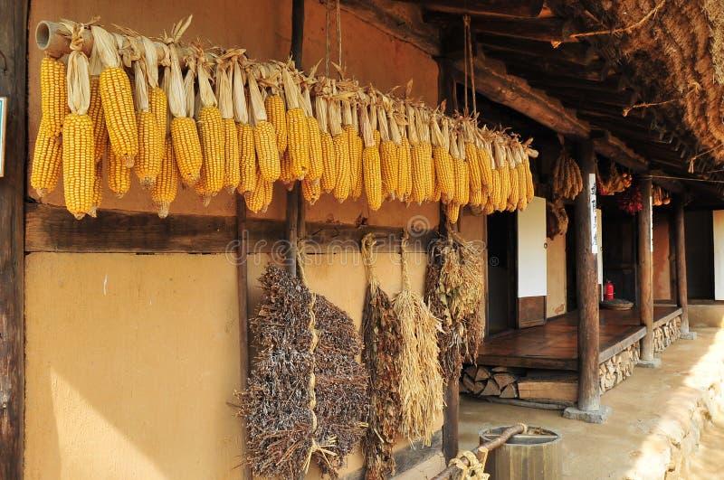 Casa tradizionale coreana del villaggio fotografia stock libera da diritti