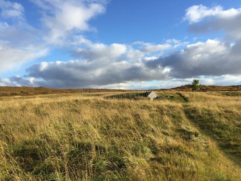 Casa tradizionale del tappeto erboso in parco nazionale, Islanda del sud fotografia stock libera da diritti