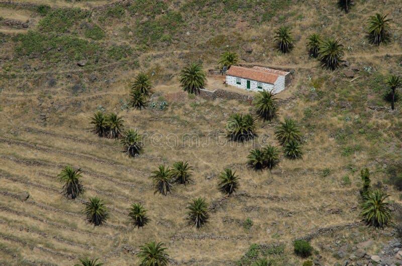 Casa tradizionale e canariensis di Phoenix delle palme da datteri dell'Isole Canarie fotografie stock libere da diritti