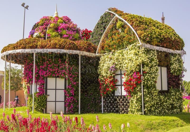 Fiori nel giardino di casa - Fiori di giardino ...