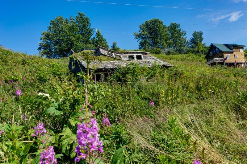 Casa velha abandonada de desintegração em Alaska, Ninilchik, Kenai Penins imagens de stock