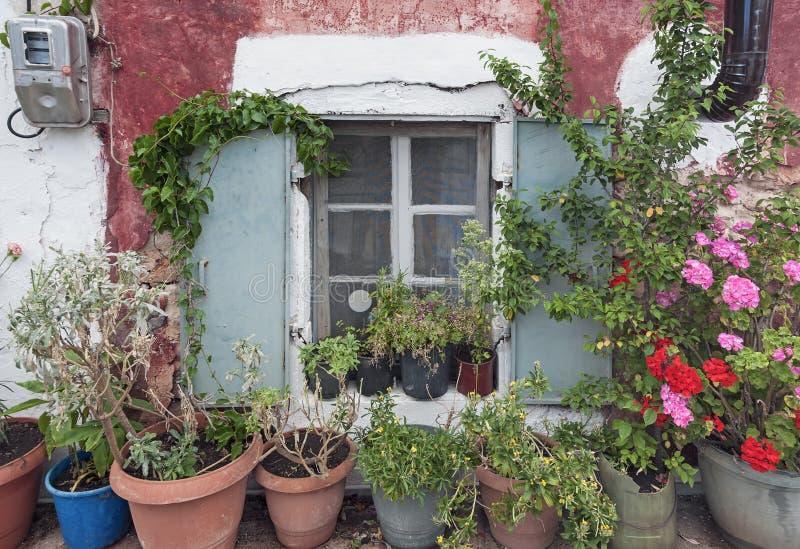 Casa velha com potenciômetros de flor fotos de stock royalty free