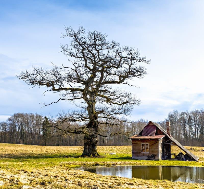 Casa velha do banho em viciniy do solar de Ungermuizha, Letónia fotografia de stock royalty free