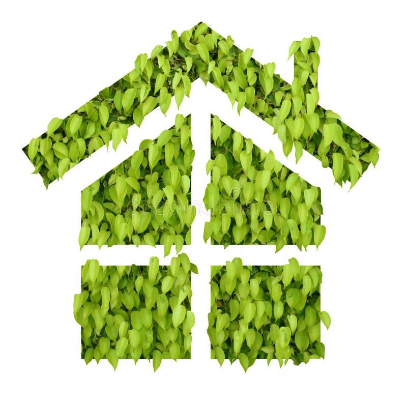 Casa verde de la hoja fotografía de archivo libre de regalías