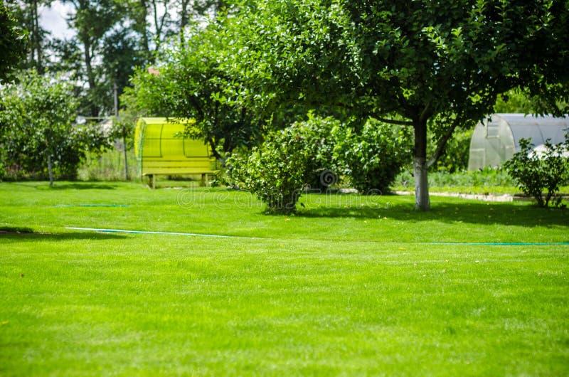Casa verde del jardín del patio trasero del césped foto de archivo libre de regalías