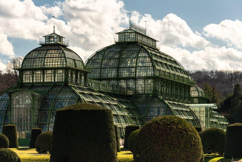 Casa verde Palmenhaus Schonbrunn imagen de archivo