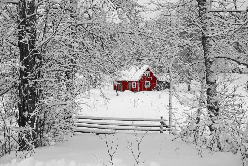 Casa vermelha idílico sueco fotografia de stock