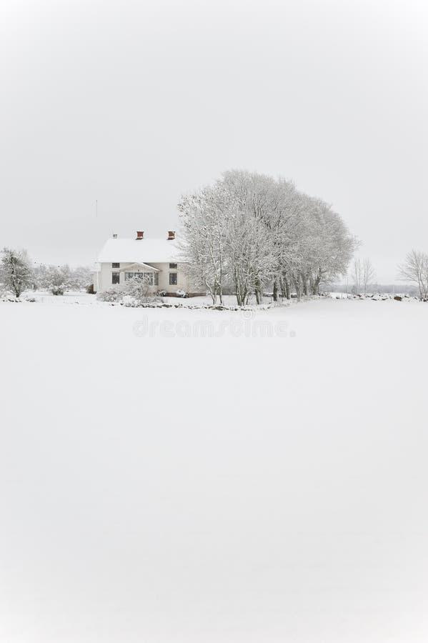 Casa y árbol en tempestad de nieve fotografía de archivo