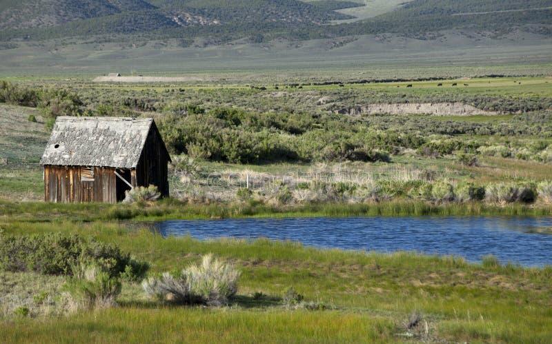 Casa y charca viejas de la granja fotos de archivo