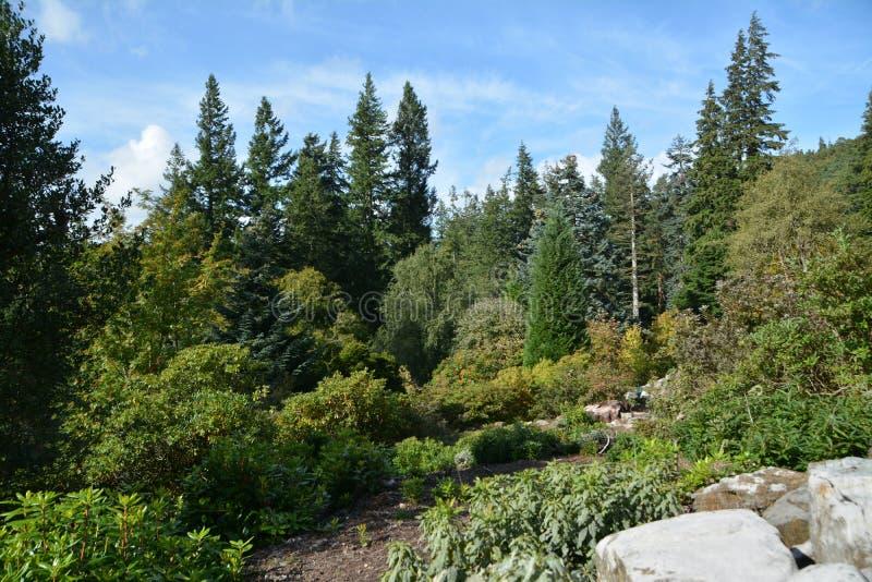 Casa y jardines Northumberland de Cragside fotos de archivo libres de regalías